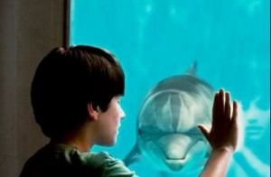 Winter's Story of A Dolphin Tale